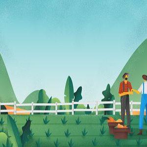 Cerca-Trova-Agricoltura-Agricole-Fertilizzanti-Concimi-Colture-Allevamenti-Piantagioni-Raccolti-Contadini-Campagna